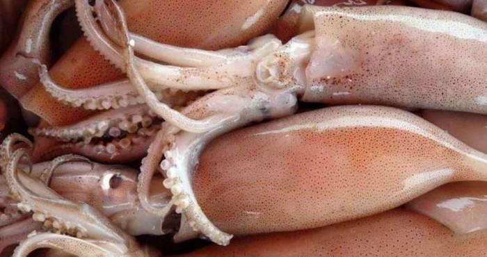 Сколько времени отваривать кальмаров