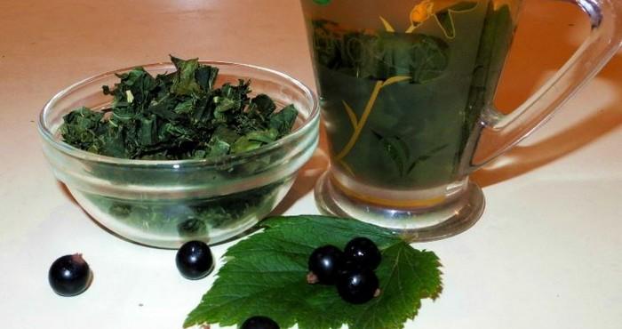 Состав чая с листом смородины