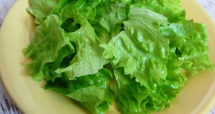 свежие листья салата