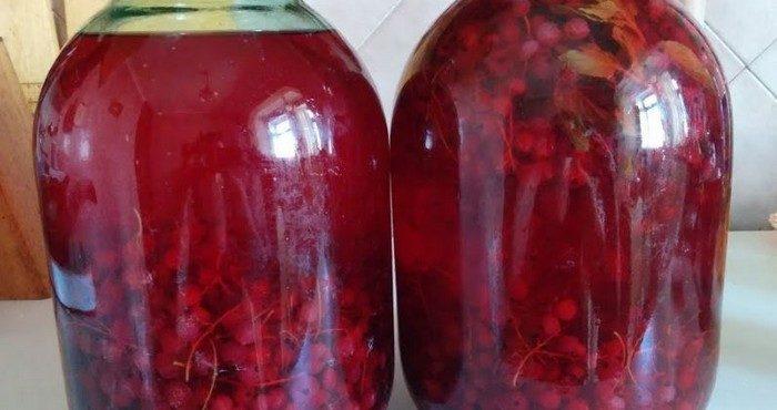 Компот из красной смородины на зиму – сохраняем витамины