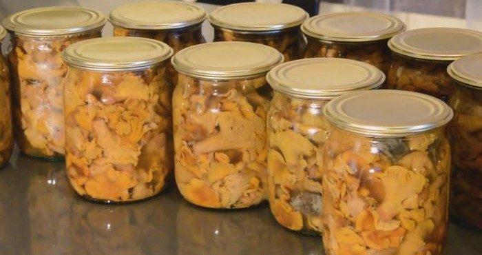 приготовление маринованных лисичек на зиму