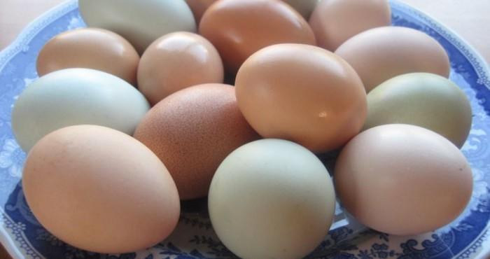 Когда нельзя использовать яйца