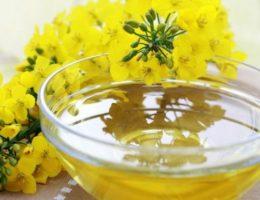 Рапсовый мед польза и вред