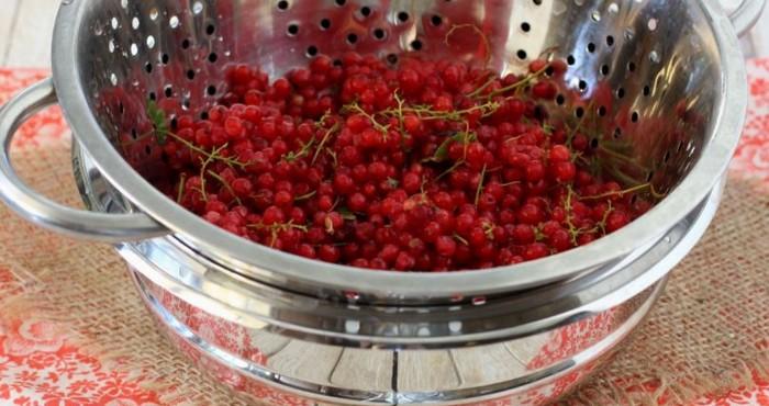 чистые ягоды