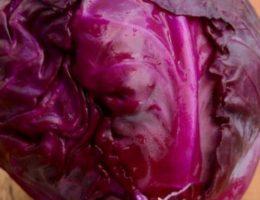 Краснокочанная капуста польза и вред