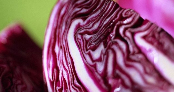 Что такое краснокочанная капуста