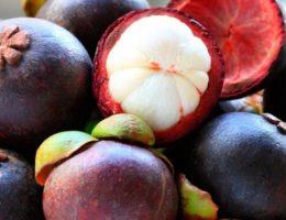 мангостин польза и вред